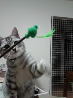 おもちゃの最後!?