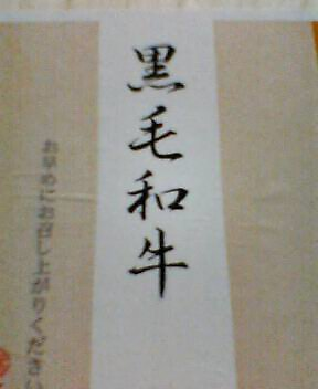 P251iS01030